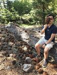 huge pine cone