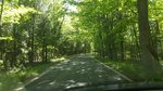 Driving through the Tunnel Tree