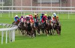 Shatin Race Jun 2012-01