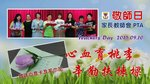 20150910-PTA_teachers_day-17