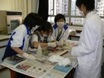 20061205-f3dissection-26