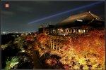 清水楓の夜
