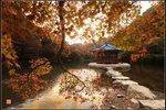 秋楓輕撫水雲間