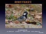 20180304 蒼背山雀