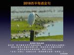 20181021 大白鷺